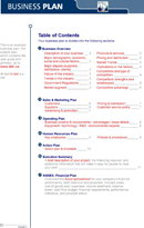 Example Business Plan