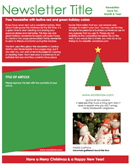 Christmas Newsletter 3 form