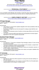 IT - Project Manager CV Template